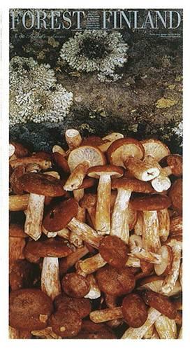 forestfinland36uusi